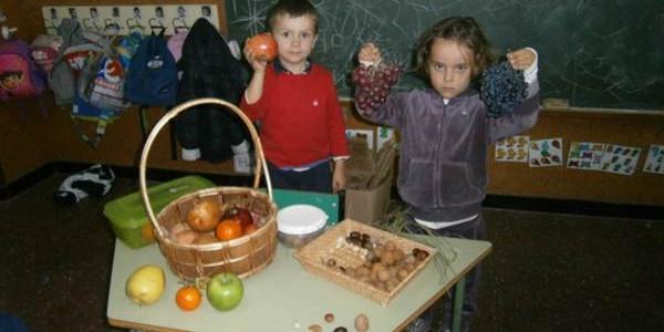 Udazkeneko fruituak